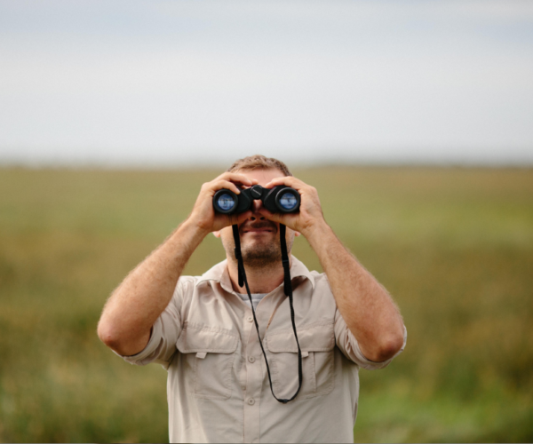 Outsourcing a job search, Influencing Entrepreneur